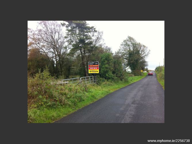 Main image of 6.5 Acres Agricultural Land,Cloonsheen,  Kilconly,  Tuam, Tuam, Galway