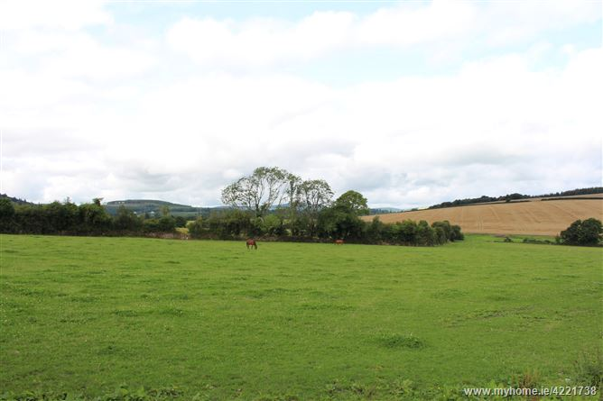 Hillbrook, Tinahely, Wicklow
