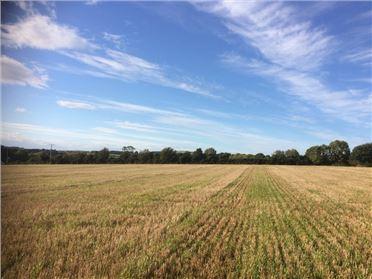 Main image of Ballamon, Ferns, Wexford