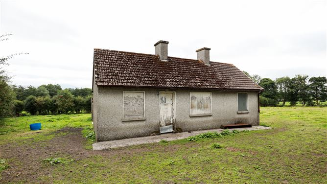 Main image for Renovation Cottage on c. 1 acre at Kilcloney, Borris, Carlow