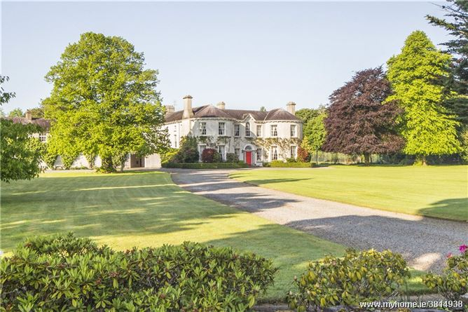 Dowdstown House Stud, Maynooth, County Kildare