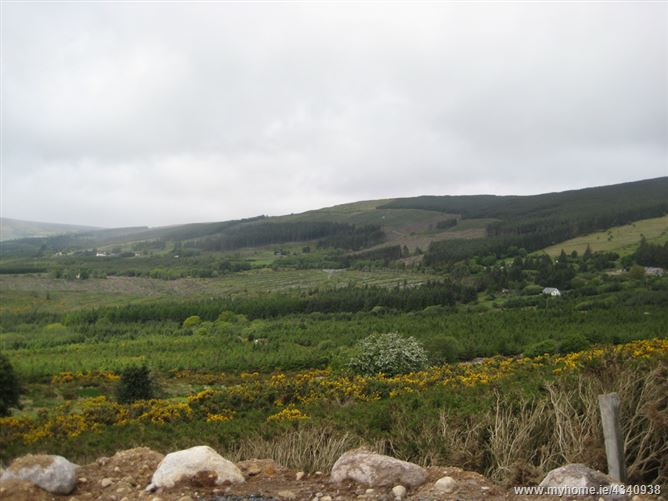 Main image for c.1 Acre Site, Barnamire, Enniskerry, Wicklow