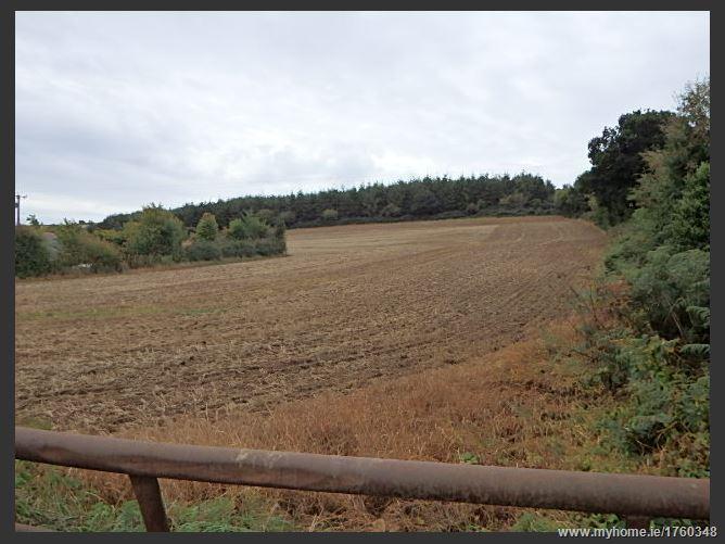 Springvale (K79) - site, Enniscorthy, Co. Wexford