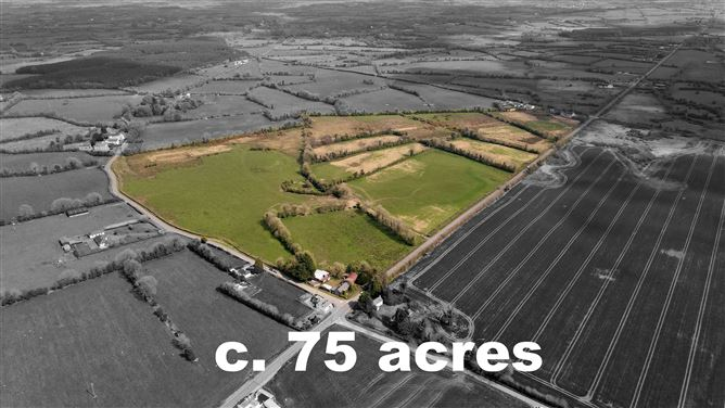 Main image for Moyvore, Moyvore, Westmeath