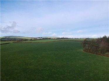 Photo of Ballyhogan, Carrigatoher, Nenagh, Co. Tipperary