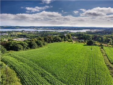 Main image of c.14 Acre Non Residential Agricultural Holding, Factory Hill, Glanmire, Cork