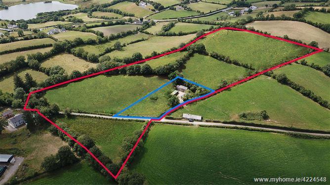 Castleblayney, Monaghan Commercial property priced