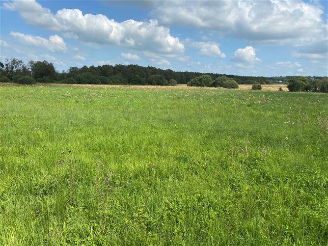 Main image for 13.099 Acres at Gilltown Lane, Donadea, Kildare