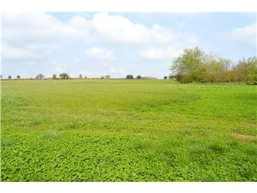 Photo of 2 Acre Field, Ballindenisk, Watergrasshill, Co Cork