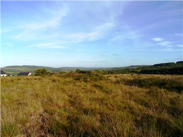 Main image of Circa 22 acres (in 1 or 2 lots) at Coolroe, Thomastown, Kilkenny