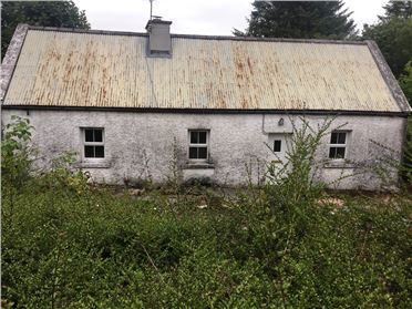 Photo of Dereen Callow , Foxford, Mayo