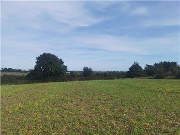 Property image of Ballyfarnoge, Screen, Co. Wexford