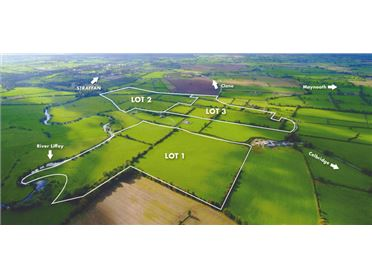 Main image of 154 Acres (In Lots) at Ardrass, Straffan, Kildare