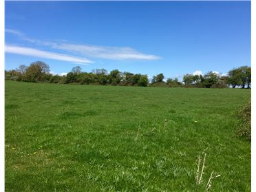 Main image of 220 Acres (In Lots) at Ardrass, Straffan, Kildare