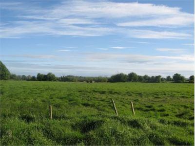 Boherduff, Caherelly, Grange, Co. Limerick