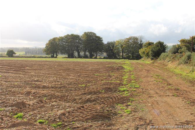 Tinnock Upper, Gorey, Wexford