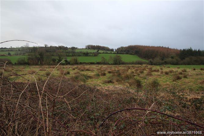 Tinnahinch, Graiguenamanagh, Kilkenny