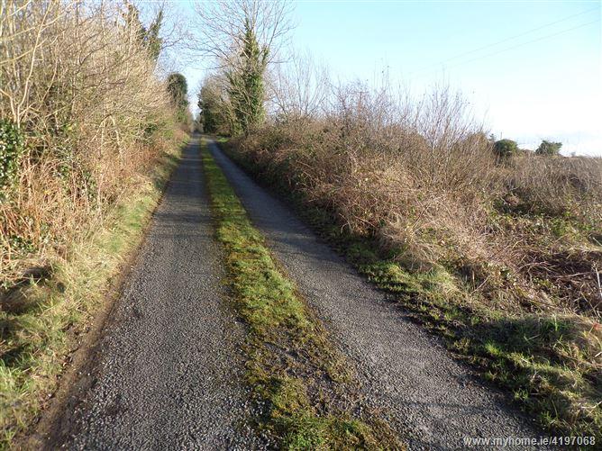 Quinaltagh, Garrafrauns, Tuam, Galway