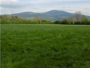 Main image of Lands of C. 55 Acres  at Ballyvaughan, Powerstown,Clonmel For Auction