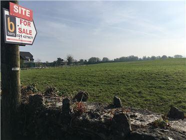 Photo of 0.5 acre site at Springfield House, Sixmilebridge, Clare