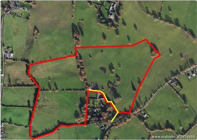 Approx. 34 Acres/13.8 Hectares, Dungar, Roscrea, Co Tipperary