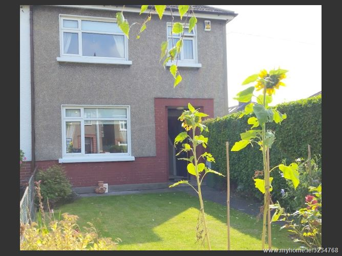 Homes For Rent In Dublin Ireland Dollymount