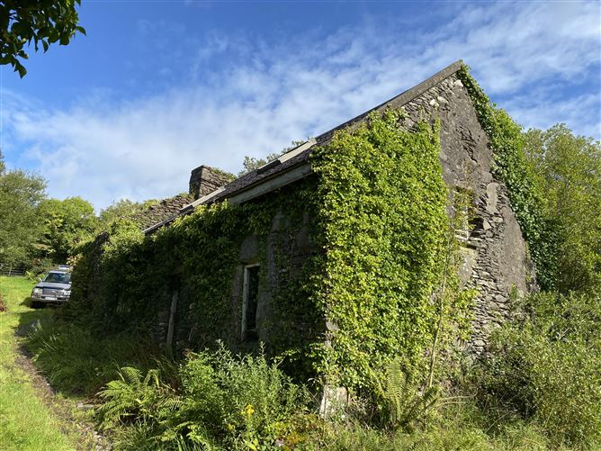 Main image for Ref 899 - Old Cottage/Ruin, Canuig, Mastergeehy, Waterville, Kerry
