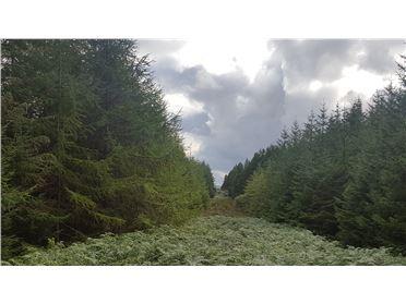 Main image of Coolaney, Coolaney, Sligo