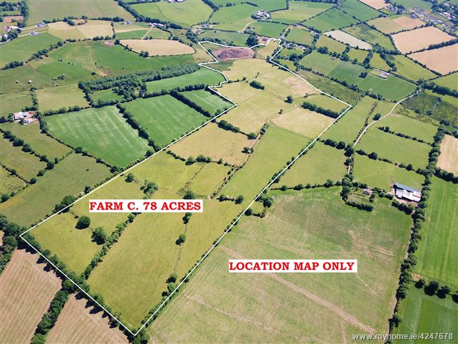 Land c. 78 Acres/ 31.56 Ha., Ballinacrow, Baltinglass, Wicklow