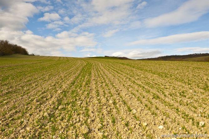 Harristown, Naas, Co.Kildare on c.143 acres