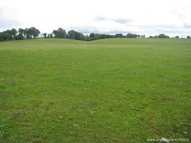 Main image for Moatfarrell, Edgeworthstown, Longford