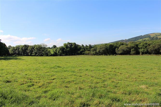 Millquarter, Monaseed, Gorey, Wexford