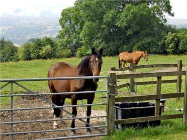Main image of Spout Barn Pet,Shottle, Derbyshire, United Kingdom