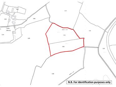 Photo of Land comprised within Folio WX51651F, Ballymaclare, New Ross, Co. Wexford