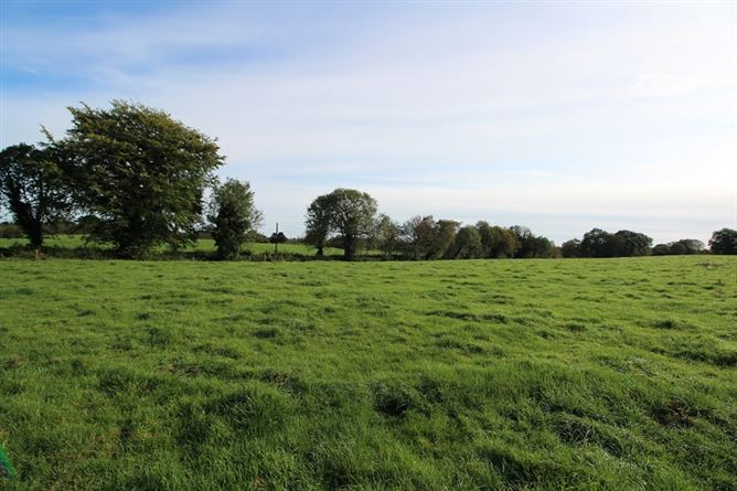 Main image for The Downs, Mullingar, Westmeath