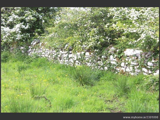 Treenkeel, Kiltimagh, Co. Mayo