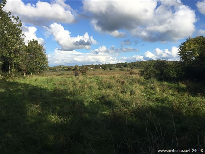 Photo of 6.839 hectares (16.9 acres) Cregard, Barefield, Ennis, Clare