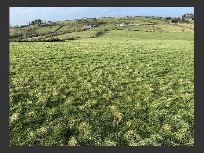Main image for Greaghagarran & Lear, Bailieborough, Cavan