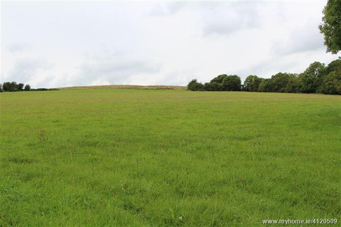 Tyfarnham, Multyfarnham, Westmeath