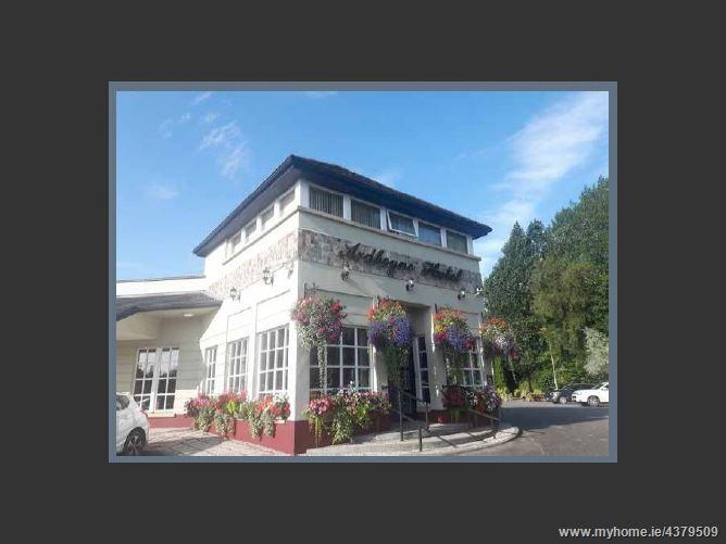 Main image for The Ardboyne Hotel Dublin Road, Navan,Co. Meath, C15 C9YA