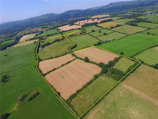 Main image for Nutgrove,Farrahy,Kildorrery,Co. Cork,P67HY23