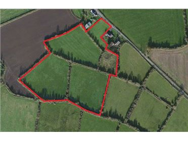 Main image for 12.5 Acres of Agricultural Lands at Clonsast Lower, Bracknagh, Portarlington, Laois