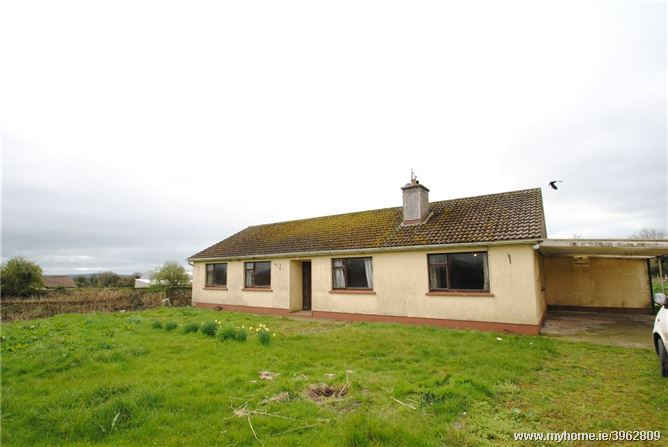 Springpark (And Approx. 13.5 Acres), Whitehall, Ballingarry, Roscrea, Co Tipperary