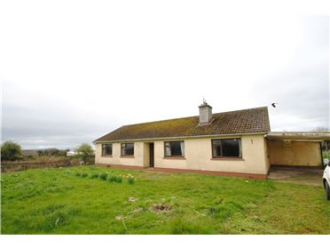 Photo of Springpark On Approx. 13.5 Acres, Ballingarry, Roscrea, Co Tipperary, E53 AE71