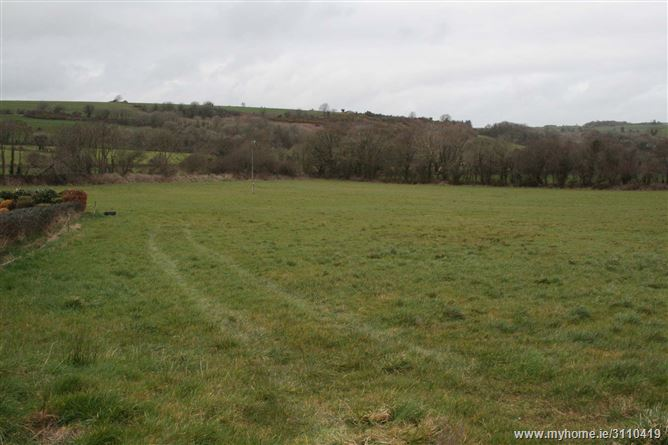 8.6 Acres @ Ballinascarthy, Co. Cork, Ballinascarty, Cork