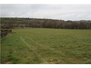 Main image of 8.6 Acres @ Ballinascarthy, Co. Cork, Ballinascarty, Cork