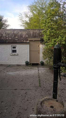 Photo of Welcoming family- Irish countryside, Thurles, Co. Tipperary