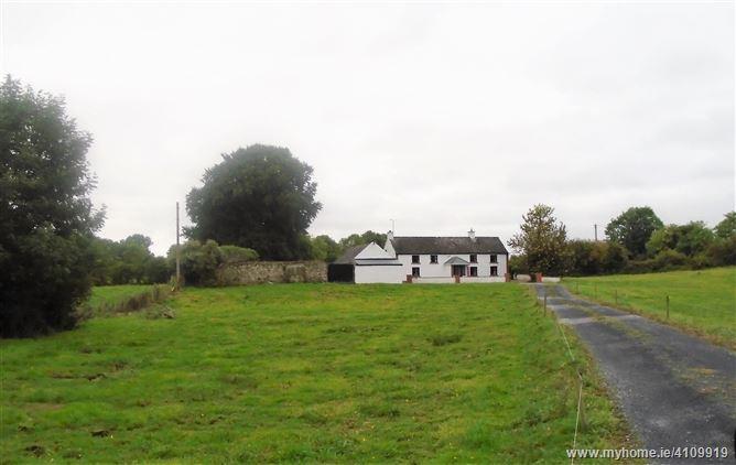 Photo of Lugan Great, Kilorgan, Ballinasloe, Galway
