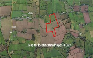 C. 50 Acres at Caherclough, Lisronagh, Clonmel, Tipperary