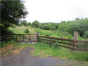 Main image of Lisnakill, Kilmeaden, Waterford